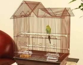 Как оборудовать клетку для попугая фото