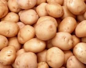 Как обрабатывать картофель фото