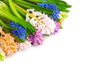 Как оформить цветы фото