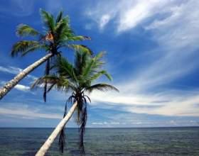 Как оформить работнику отпуск без содержания фото