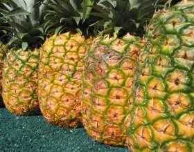 Как определить спелость ананаса фото