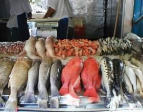 Как определить свежая ли рыба. фото