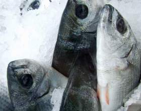 Как определить свежесть рыбы фото