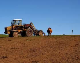 Как открыть крестьянское хозяйство фото