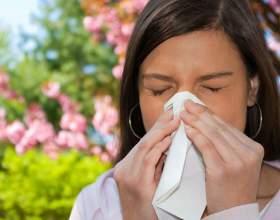 Как пережить весну аллергикам фото