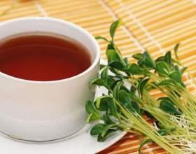 Как пить противовоспалительные травы фото