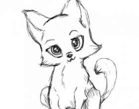 Как поэтапно нарисовать котенка карандашом фото