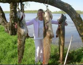 Как поймать крупную рыбу фото