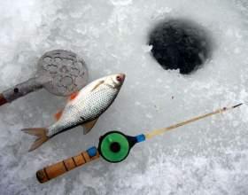 Как поймать зимой карпа фото