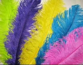 Как покрасить перья фото