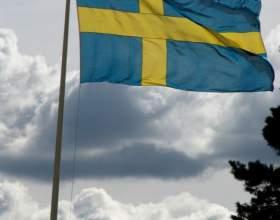 Как получить шведское гражданство фото