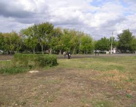 Как получить участок земли бесплатно фото