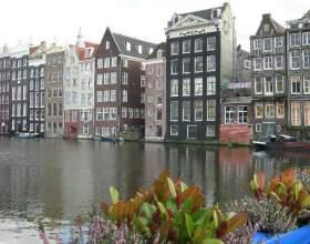 Как получить визу в голландию фото