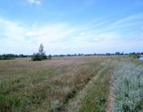 Как получить землю для фермерского хозяйства фото