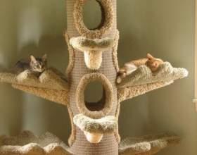 Как построить кошкин дом фото