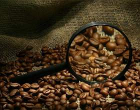 Как правильно выбрать зерна кофе фото