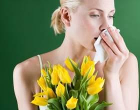 Как предотвратить аллергию на пыльцу растений фото