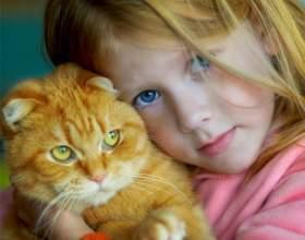 Как придумать кличку котенку фото