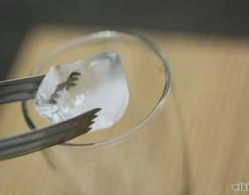 Как приготовить коктейль «Текила санрайз» фото