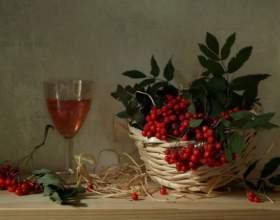 Как приготовить вино из рябины фото