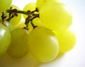 Как применять масло виноградной косточки фото