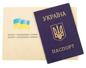 Как принять гражданство украины фото