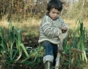 Как приучать детей к труду фото