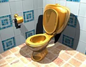 Как прочистить туалет фото