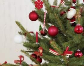 Как продлить жизнь новогодней елке фото