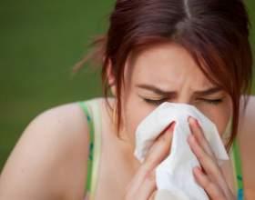 Как проявляется аллергия на собак фото