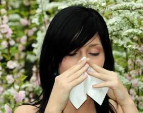 Как проявляется аллергия фото