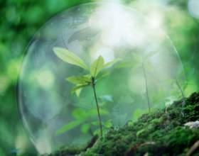 Как прошел всемирный день охраны окружающей среды фото