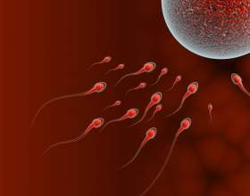Как рассчитать овуляцию для зачатия фото