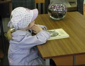 Как развить интерес к чтению фото
