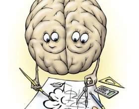 Как развивать головной мозг фото