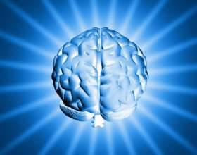 Как развивать левое полушарие мозга фото