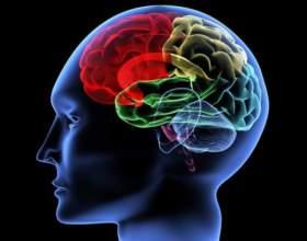 Как развивать мозг фото