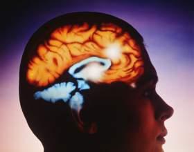 Как регулировать свой мозг фото