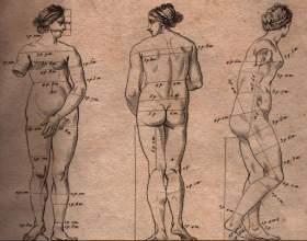 Как рисовать человеческое тело фото