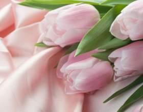 Как сделать, чтобы тюльпаны стояли долго фото