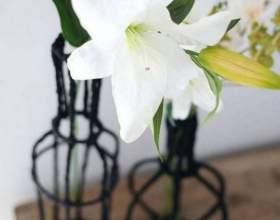 Как сделать декоративную вазу из проволоки фото