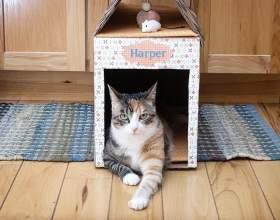 Как сделать домик для кошки из коробки фото