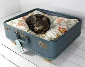 Как сделать домик для кошки фото