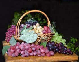 Как сделать компот из винограда фото
