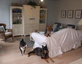 Как сделать накидку на диван фото