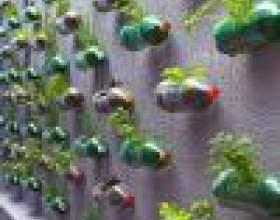 Как сделать огород из пластиковых бутылок фото
