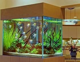 Как сделать подставку под аквариум фото