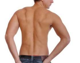 Как сделать широкие плечи фото