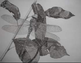 Как сделать стрекозу из бумаги фото