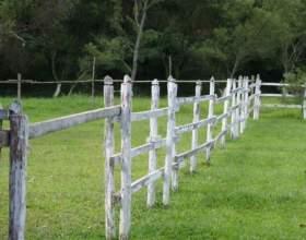 Как снять земельный участок с кадастрового учета фото